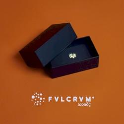 FVLCRVM - Words